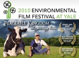 Yale Film Fest