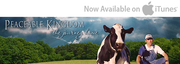 Peaceable Kingdom: The Journey Home on iTunes