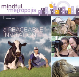 Mindful Metropolis article